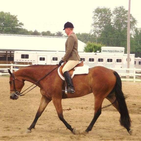 R R Equine Management