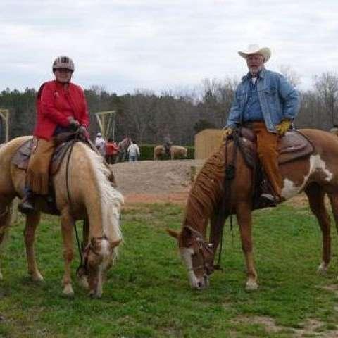 Abbotts Creek Paint Horses