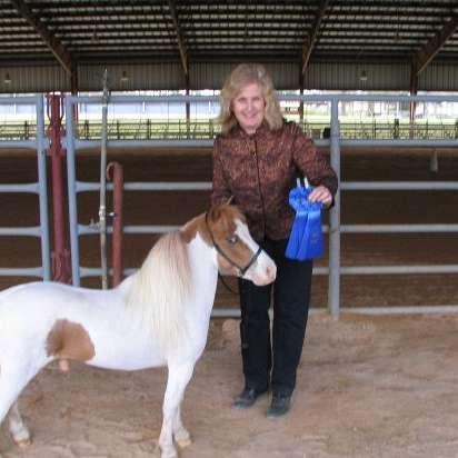 Sundance Oaks Miniature Horse Farm