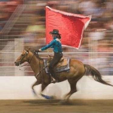 Keystone Equestrian Services