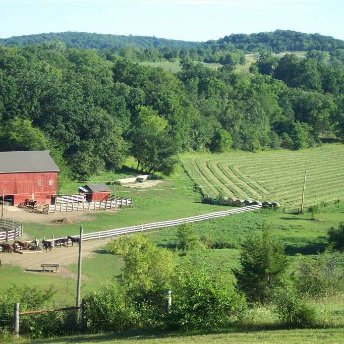 Aftermath Farm