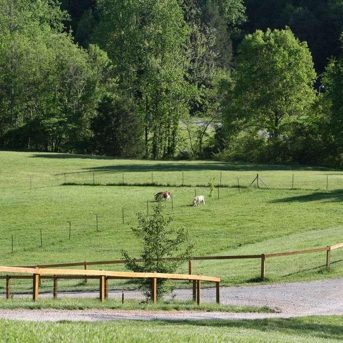 Burgin Family Farm