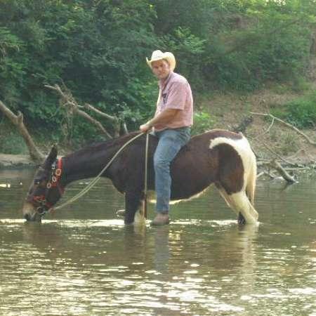 Milam Mules at Ambro Mule Ranch