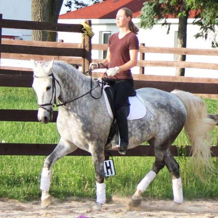 Rockton Horse Farm, Whispering Oaks Farm