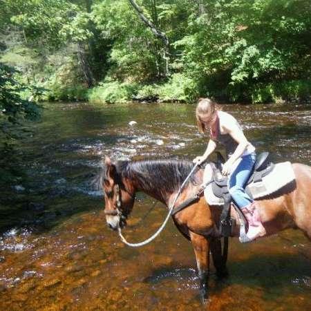 LYNDAKER'S HORSE HAVEN