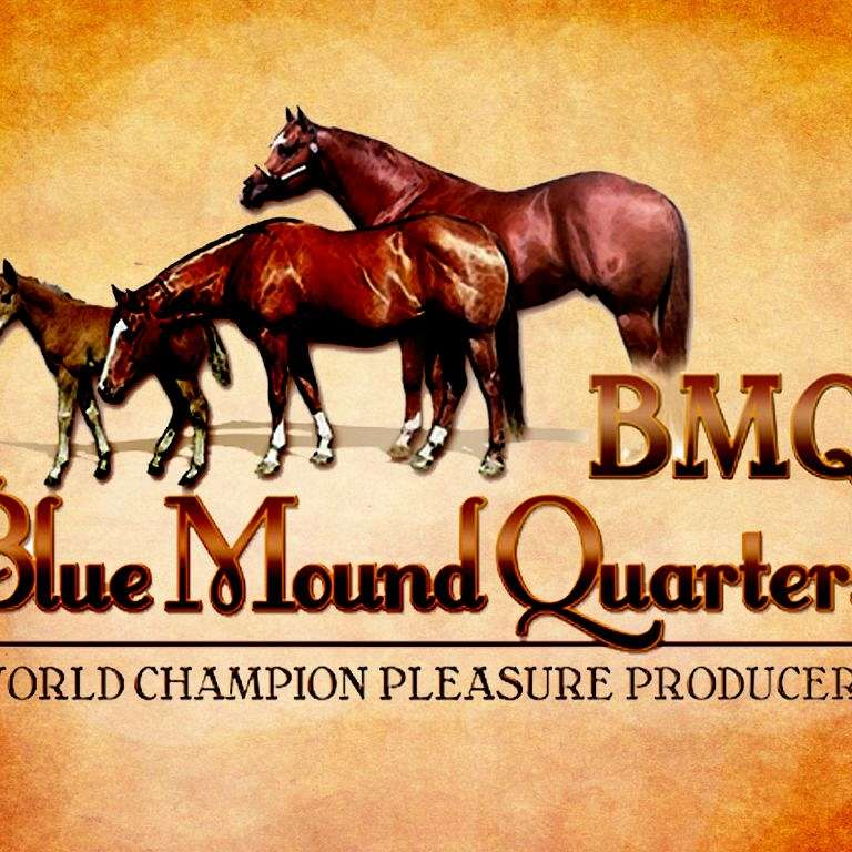 Blue Mound Quarter Horses