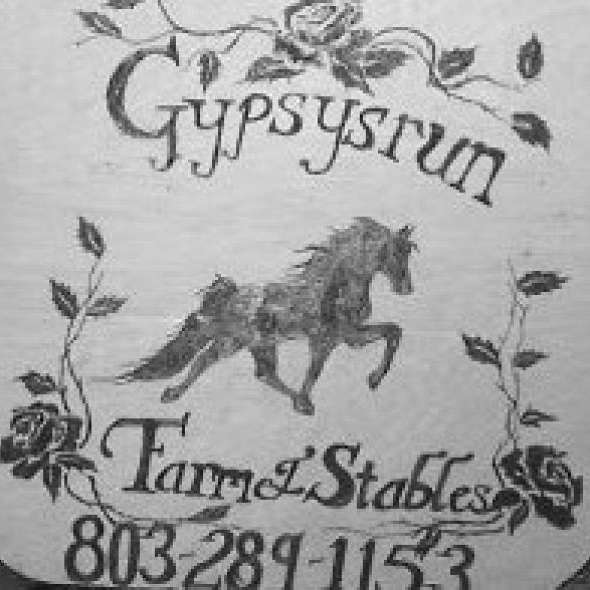 GYPSYSRUN FARM  STABLES BOARDING  BREEDING 3 TWH S