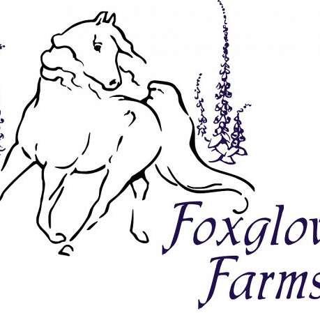 Foxglove Farms