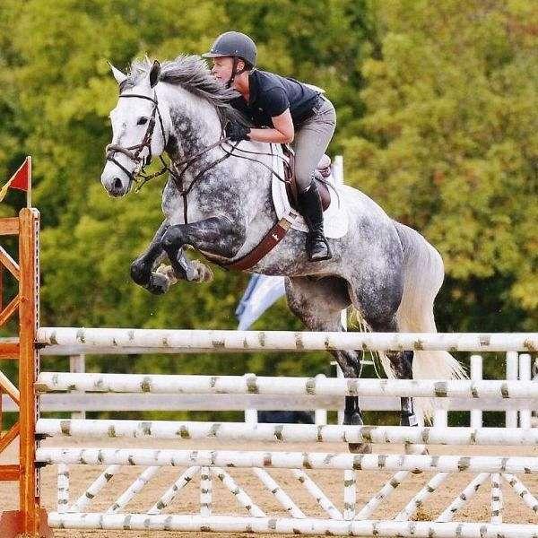 Silver Peake Equestrian