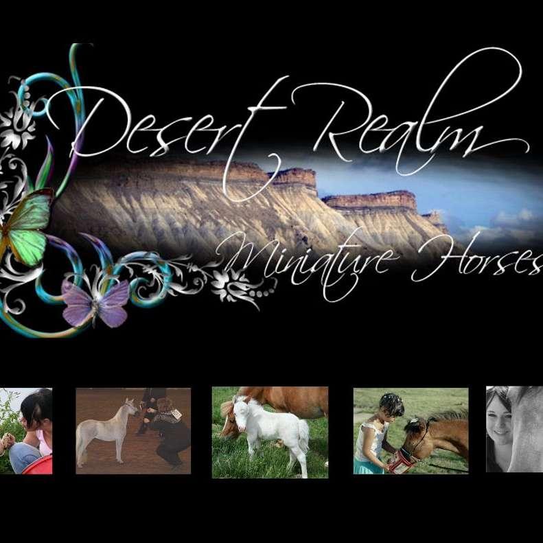 *~*Desert Realm Miniature Horses*~*