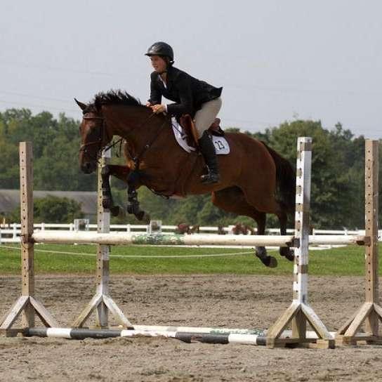 Drakestown Equestrian