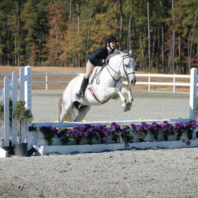 Tally Ho Equestrian Center LLC