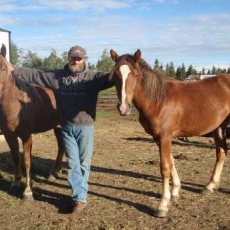 Canadian Hay Ranch