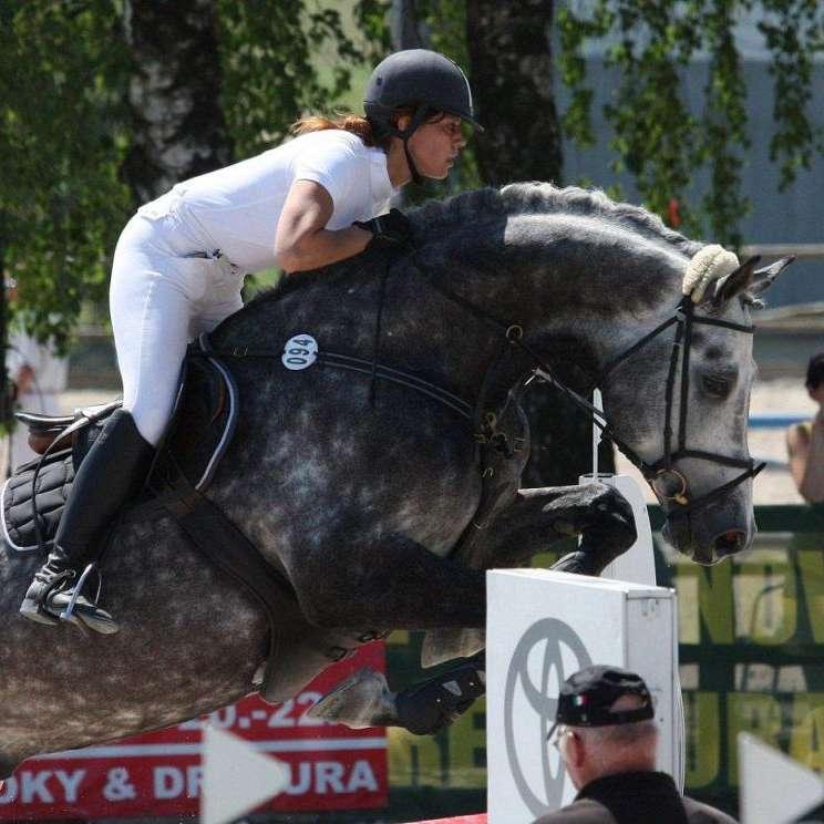 Equestrian center Zduchovice