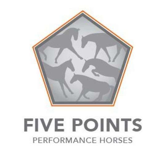 Five Points Performance Horses