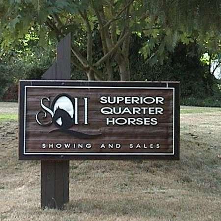 Superior Quarter Horses
