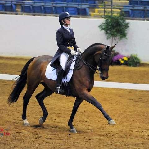 Silver Hill Equestrian Center