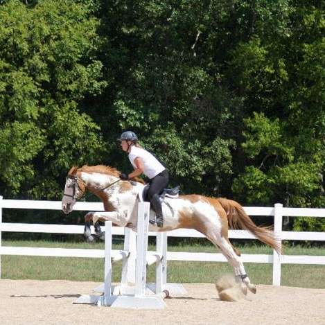 Liberty Glen Equestrian Center LLC