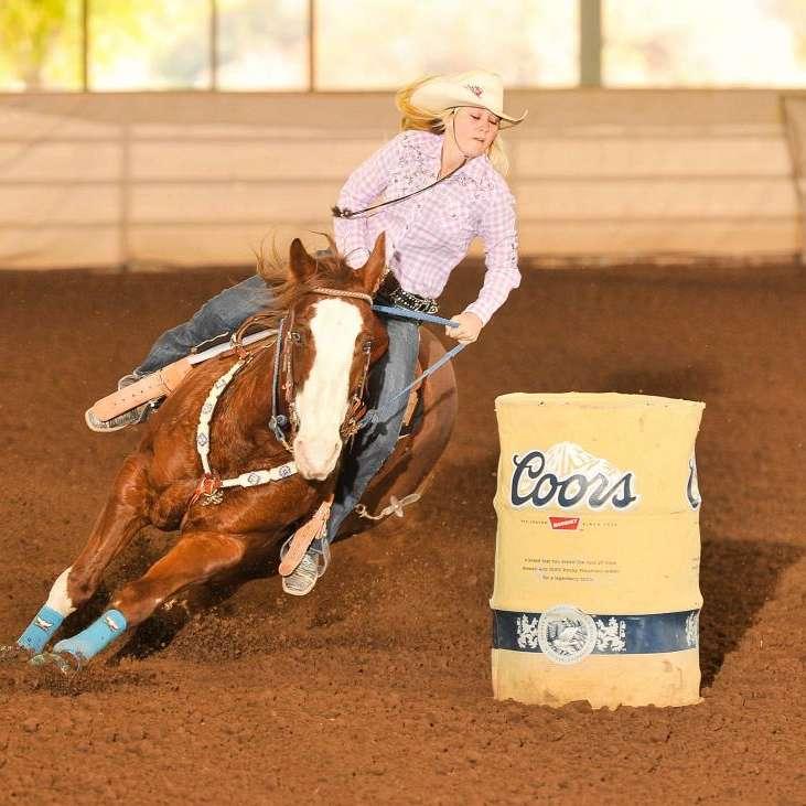 Kickin Up Dust Equine