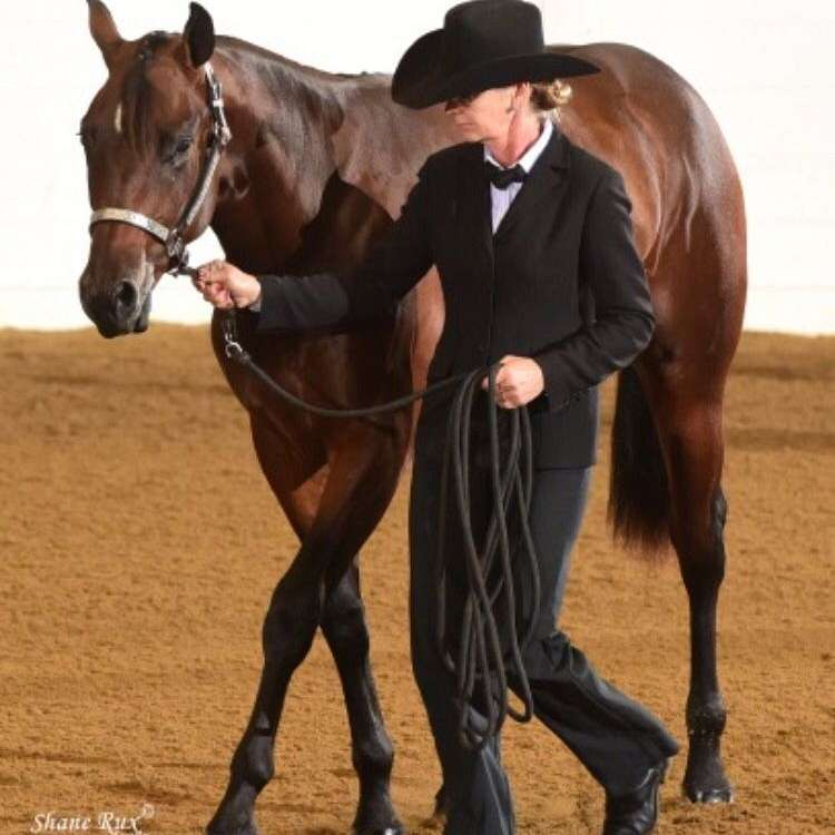 2007 aqha bay stallion invitation only deck of stars twisted pine performance horses stopboris Choice Image
