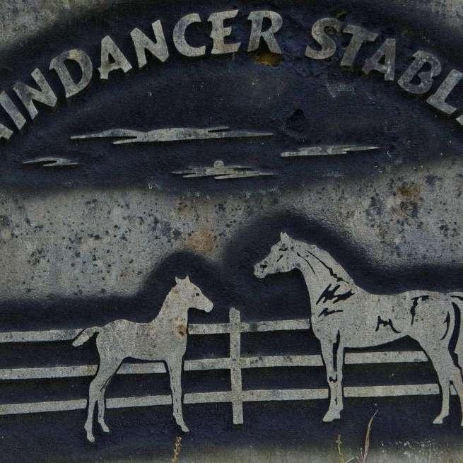 Raindancer Stables