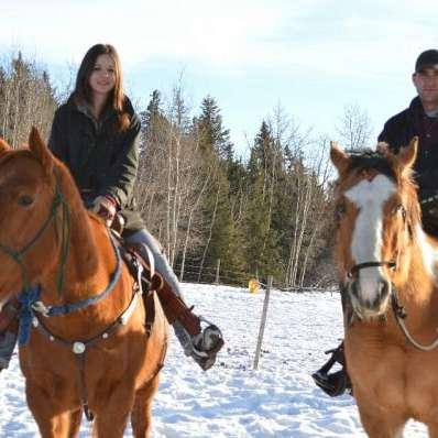 SRT Equine services