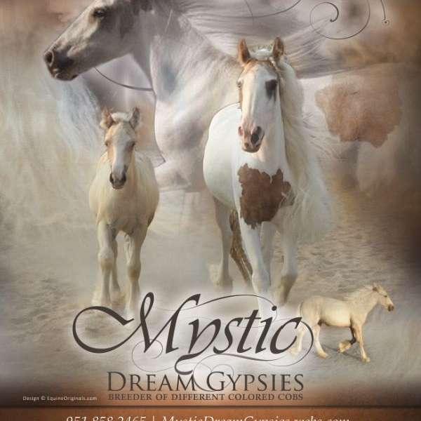Mystic Dream Gypsies