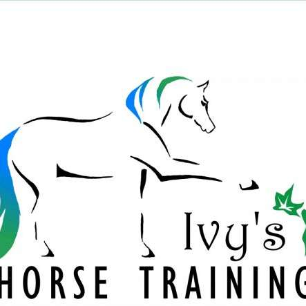 Ivy's Horse Training