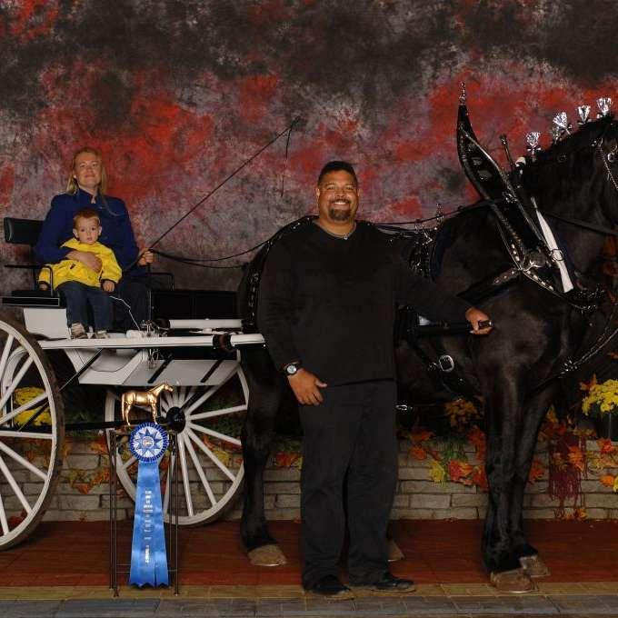 Easy Paints & Percherons