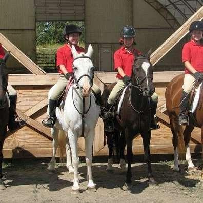 Myrewyn Equestrian