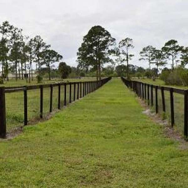 Sady Lake Equestrian Estate