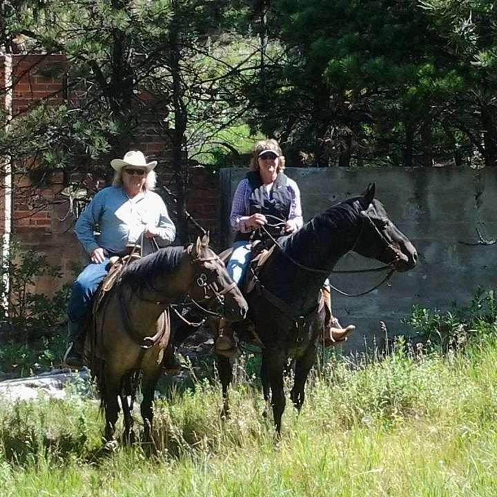 Bolding Horses