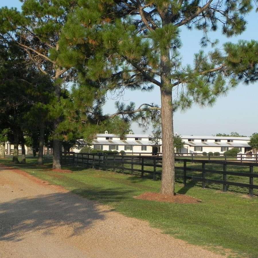 Cramer Quarter Horses, Inc.