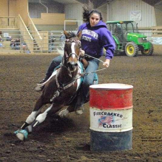 Twisted Diamond Barrel Horses