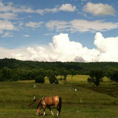 Fairfield Farms Equestrian Center