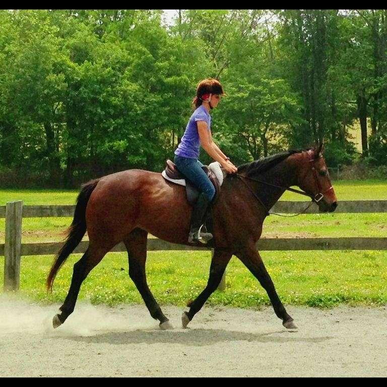 Clayton Ridge Horse Farm
