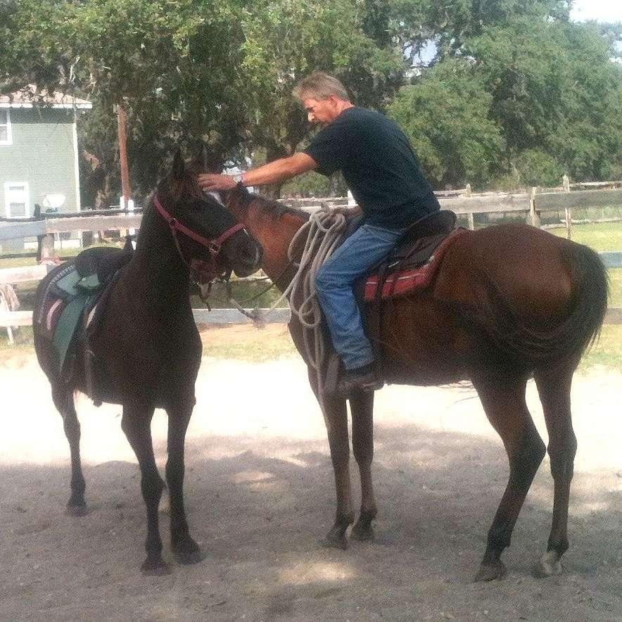 The Equestrian Training Center