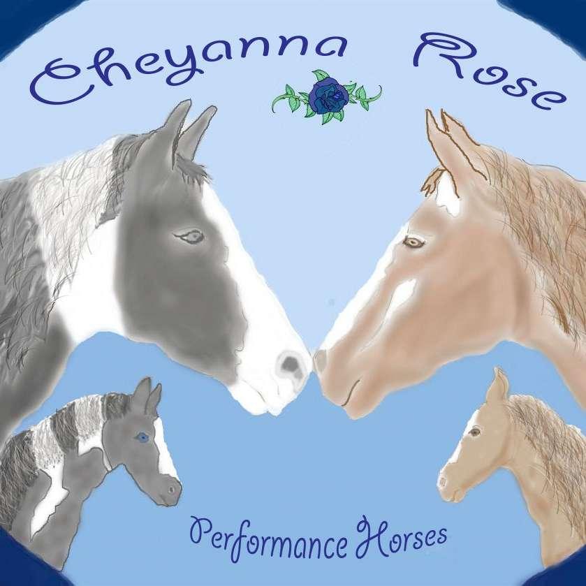 Cheyannarose Performance Horses