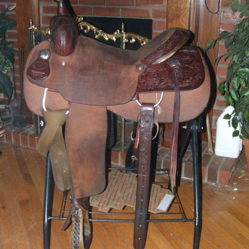 The Saddle Lady