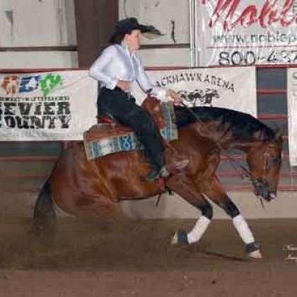 Tracy Reining Horses LLC