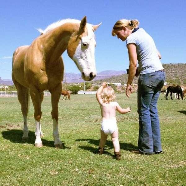 Krazy Horse Ranch