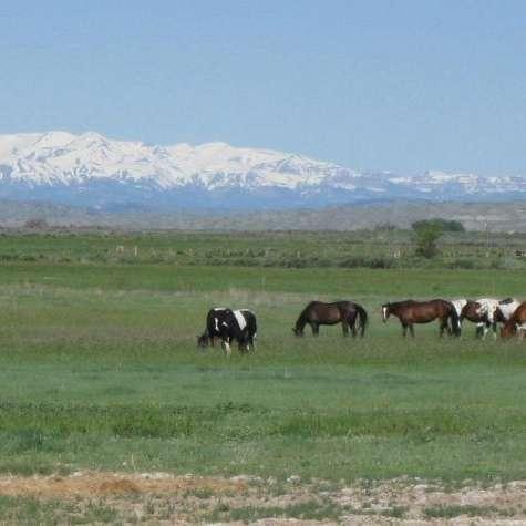 Slash RS Ranch