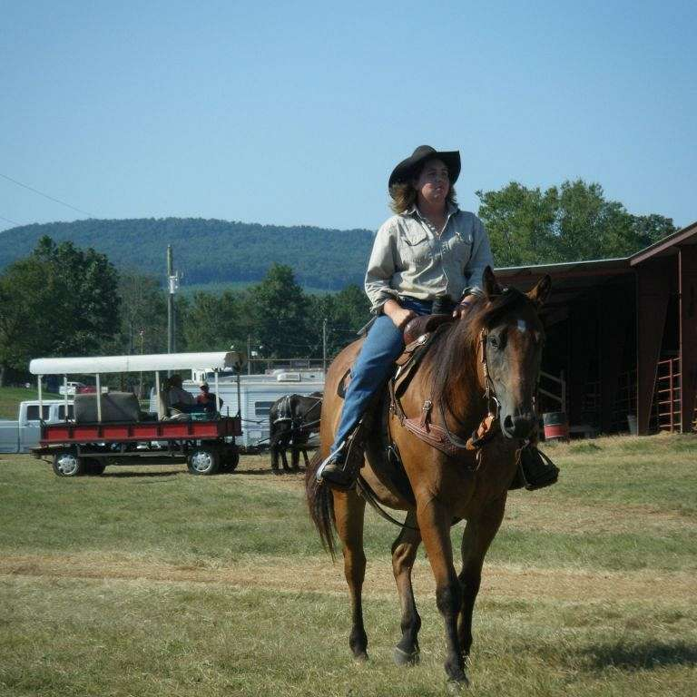 Diamond Bar E Colt Starting and Horses For Sale