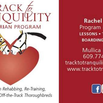 Track to Tranquility Equestrian Program