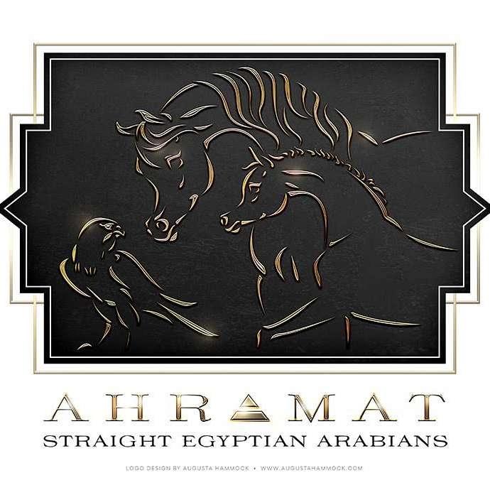 Ahramat Arabians LLC