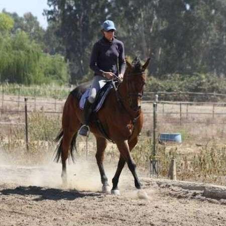 K.I.S.S. Horse Center