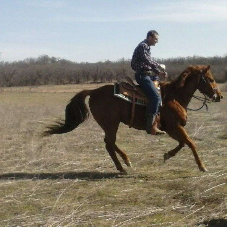 M T Barrel Ranch
