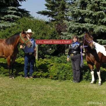 C & L Quarter Horses and Paints
