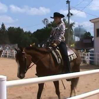 Sommers Quarter Horses