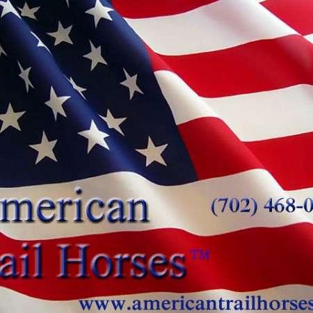 American Trail Horses